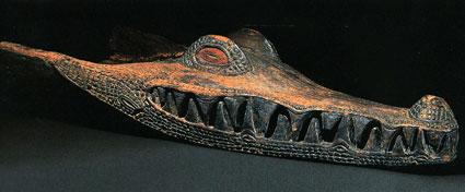 Crocodile425
