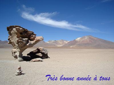 Voeux_blog400
