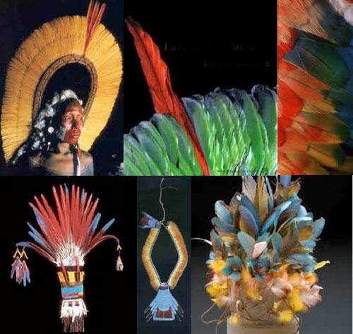 Lart-de-la-plume-Amazonie