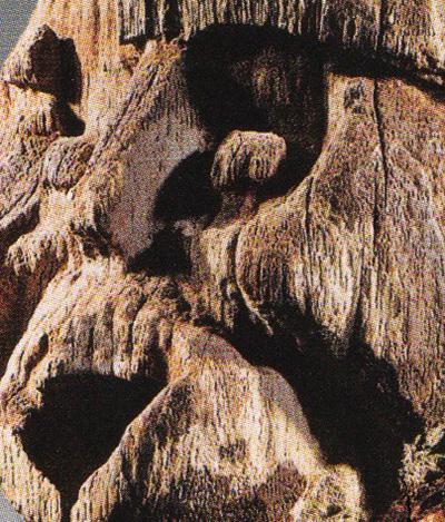 Detail-bamileke