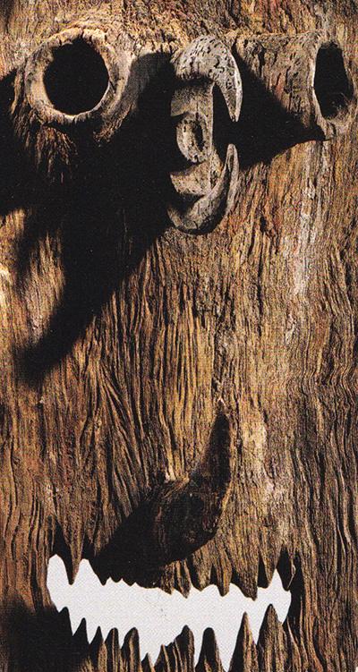Detail-bahinemo