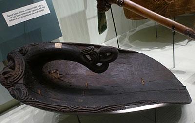 Ecope-maorie