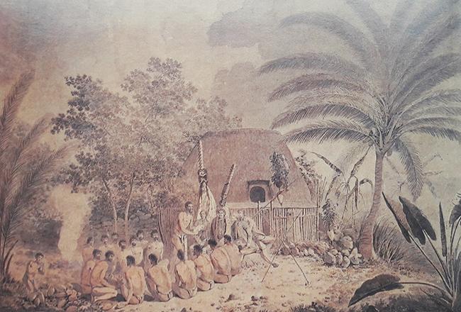 Webber-hawaii