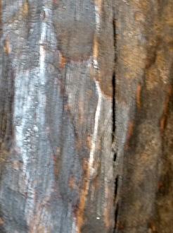 Patine-art-africain