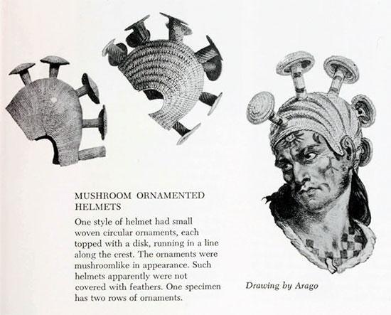 Hawaii-mushroom-helmet