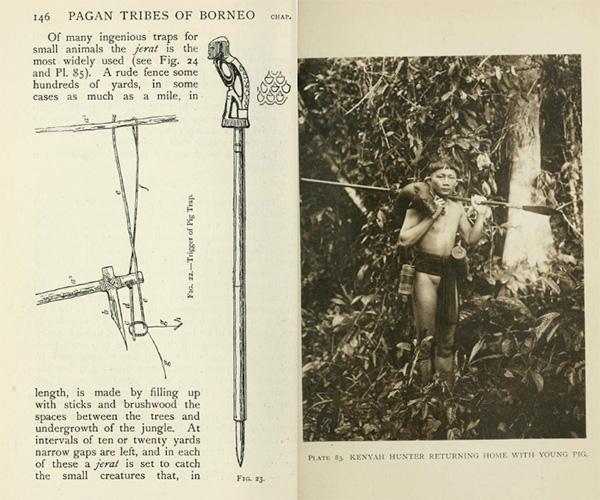 Pagan-tribes